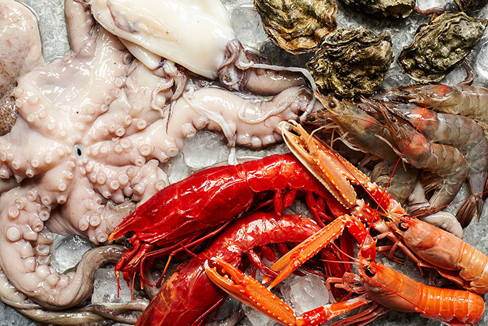 seafood_raw-copy