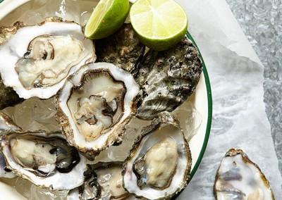 Oysters   Photographer   Jen Rich